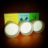 Bougies en verre blanches décoratives givrées de bonne qualité de soja de métier