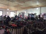 De Schoenen van de invoer-uitvoer, de Gebruikte Uitvoer van Schoenen naar de Markt van Afrika
