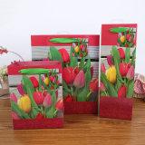 Bolsos a todo color del regalo del papel de imprenta de diversas tallas