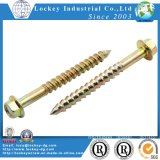 Aço inoxidável Coach Screw Lag Screw Hex Wood Screw