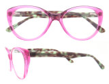 Популярные Eyeglasses обрамляют самые последние стекла глаза кота оптически рамок новые