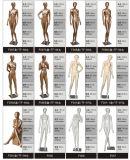 Modedesigner-volle Karosserien-grosses Brust-Weibchen-Mannequin