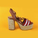 Le ultime donne che di modo le signore aprono la punta merlettano in su i sandali delle scarpe di tela dell'alto tallone