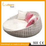 Daybed Sunbed кровати салона мебели ротанга сада Wicker