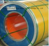 La hoja doble del color de Ccgi/el color cubierto galvanizó la bobina de acero