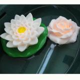 Romantische Drijvende LEIDENE van Lotus Bloemen met Waterdicht