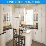 Moderne Hoog polijst de Houten Keuken van de Lak