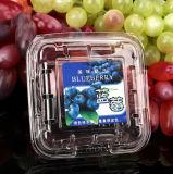Haustier-transparenter Blasen-Kasten der Blaubeere-125g