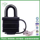 Пользованный ключом замок двери (740WP)