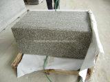 Punti nebbiosi del granito della Cina G664 Brown