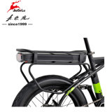 350Wブラシレスモーターリチウム電池が付いている山の電気自転車