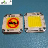 LED de 100W COB LED Superbright Poder