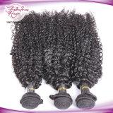 Соткать волос скручиваемости дешевых волос девственницы продуктов курчавых малайзийских Kinky