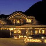 Bonhomme de neige mignon de Noël DEL de lumière de chaîne de caractères de DEL pour la lumière de vacances d'hiver