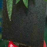 Hoja acanalada helada de la PC de la hoja del policarbonato de la hoja sólida de la depresión con la protección ULTRAVIOLETA