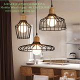 Nordic Retro Iron Track Shop Shop Shop Pendant Light (GD-603-1D)