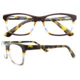 Heiße verkaufenentwurfs-Brille-optische Rahmen