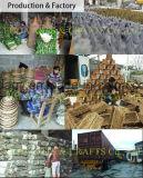 Cestino profondo di programma di utilità del giardino del rattan di Salim