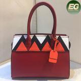 Sacchetto di spalla caldo del progettista delle borse delle signore del Tote di modo con colore Sy8042 di contrasto