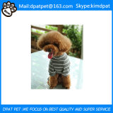 Divertidos abrigos para perros mascotas importación de productos animales procedentes de China