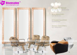 Silla popular del salón del peluquero del espejo de los muebles del salón de la alta calidad (P2022E)