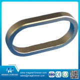 Соединение магнита NdFeB неодимия магнитное для магнитного насоса