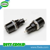 Fusibile di ceramica dell'automobile del supporto Fbfh1113 del fusibile