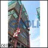 Крупноразмерный двойной подъем конструкции здания клетки