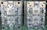 Todas las clases de proceso plástico del moldeo por inyección del molde