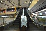 Barandilla segura resistente de la escalera móvil al aire libre de interior de la escalera móvil eléctrica