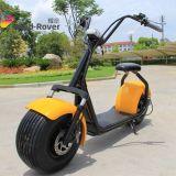 Citycocoの土のバイク2の車輪の電気オートバイの脂肪質のタイヤの電気バイク
