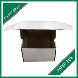 제조자 골판지는 도매로 상자에 넣는다 (027를 포장하는 숲)