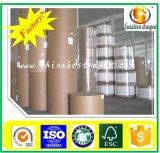 panneau duplex enduit blanc de 280g Chine avec la fabrication de dos de gris