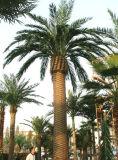 Метров пальмы даты высокого качества напольные 8 искусственной