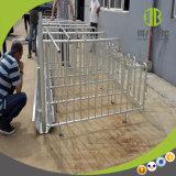 Berufshersteller-Schwein-Geräten-Schwein-Schwangerschaft-Stall-einzelner Stall