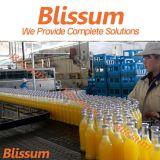 Chaîne de production de machine de remplissage de jus de bouteille en verre