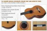Guitarra clásica sólida de la parte posterior del arco del grado del amo de la marca de fábrica de Aiersi (SC201)