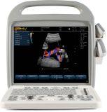 Ultrason vétérinaire porté à la main Bcu 30 de couleur de Digitals