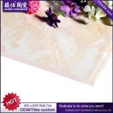مشترى ضخم من الصين عن كفّ خزفيّة جدار و [فلوور تيل] يزجّج جدار قراميد