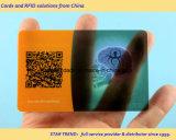 Cartões no cartão transparente com tira da assinatura do Loco 300OE de Hico 2750OE