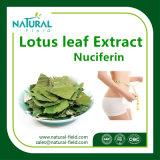 Extrait normal pur de lame de lotus de Nuciferine d'extrait de centrale pour la perte de poids