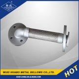 Flexibles Metalschlauchleitung begleiten