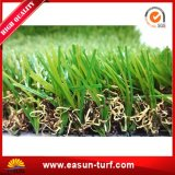 Het decoratieve Natuurlijke Kunstmatige Gras van het Gras met SGS Certificaat