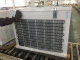 Congélateur simple de poitrine de C.C de porte avec le réfrigérant de R134A et la capacité de congélation 258L