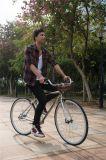 Bicicleta caliente de la venta de la impulsión del eje de los clásicos, bicicleta barata del ocio