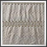 tela do laço do bordado 100%Cotton para a roupa