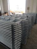 Ringlock Baugerüst-Strichleiter für Verkauf