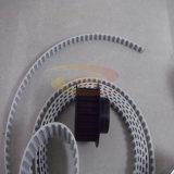 Cinghia di sincronizzazione e puleggia cronometrante