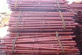 Système Individu-Verrouillé d'échafaudage de serrure de tasse de serrure rapide de pipe en acier