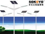 réverbère solaire de 60W Ojet avec 8m Polonais